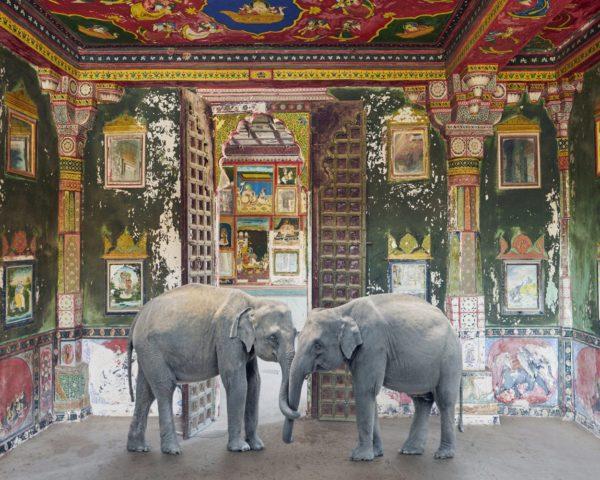 Karen Knorr, Friends in Need, Juna Mahal, Dungarpur Palace