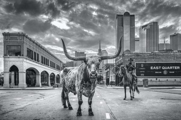 David Yarrow, A Dallas Cowboy