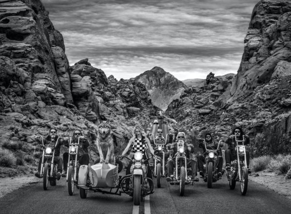 David Yarrow, The Leader of the Pack