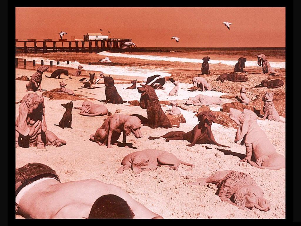 Sandy Skoglund, Dogs On the Beach