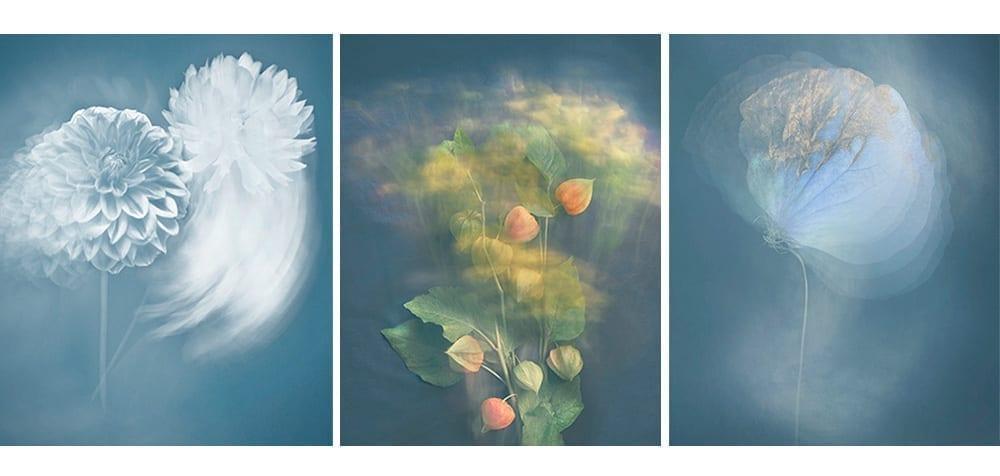 Joyce Tenneson, Radiant Beings