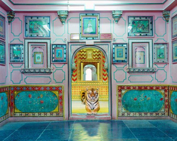 Karen Knorr, Interloper, Sheesh Mahal, Udaipur City Palace