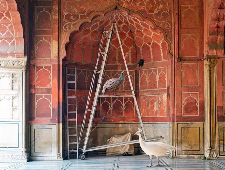 Karen Knorr, One Spoken To By Angels, Jama Masjid Delhi