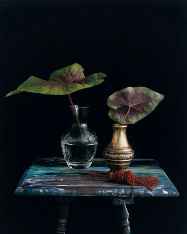 Michael James O'Brien, Still life with a Red Tassel