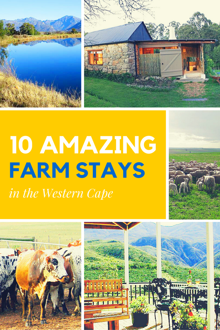10 Amazing Farm Stays in the Western Cape - Holidays + Kids