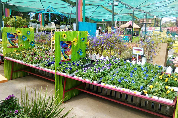 Pretty Gardens Nursery Has Won Numerous Awards, But Also Offers Food,  Entertainment, Clothes And Events.