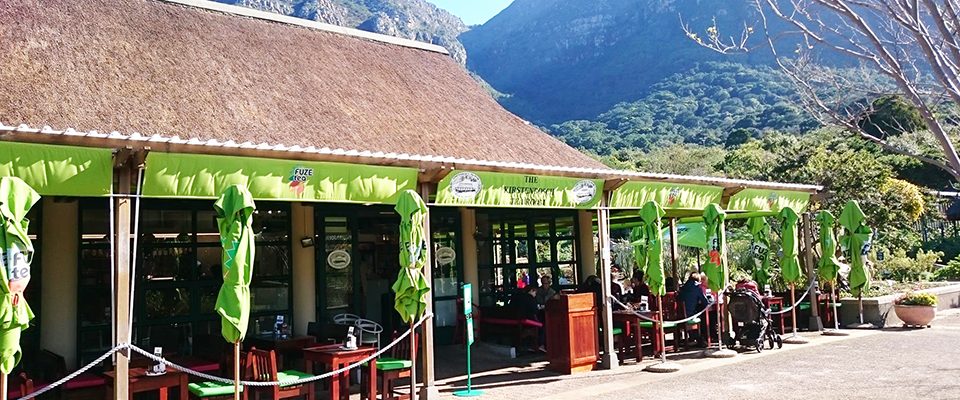 kirstenbosch-tea-room