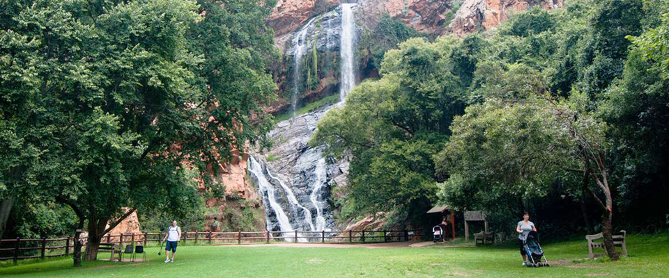 Image of waterfall at Walter Sisulu National Botanical Garden