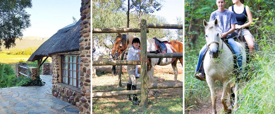 Images of Hollybrooke Adventure Farm, Hartbeespoort