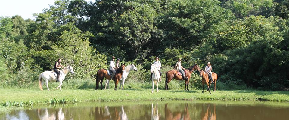 Giba Gorge Horse Trails