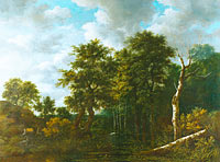 Jacob Isaacksz. van Ruisdael: A Pool surrounded by Trees