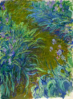 Claude Monet: Irises