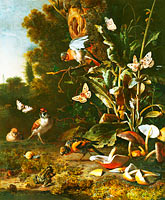 Melchior d'Hondecoeter: Birds, Butterflies and a Frog among Plants and Fungi