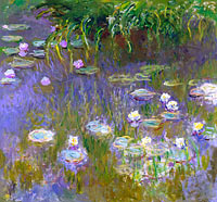 Water Lilies (10)