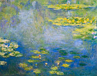 Water Lilies (13)