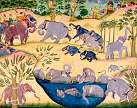 Unknown Painter: Elephant Hunt of Maharaja Anup Singh of Bikaner