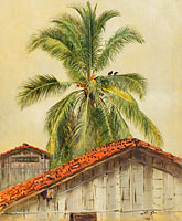 Palm Trees and Housetops, Ecuador