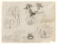 Sketches from South America, probably from Colombia. Botanical sketches. A house