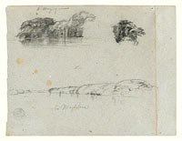 Sketches of Trees, Vines and a Bank of the Rio Magdalena, Columbia