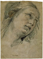 The Head of a Young Woman Looking Upward