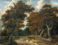 Road through an Oak Forest