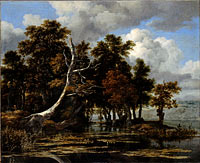 Якоб Исаакс ван Рёйсдал: Oaks at a lake with Water Lilies