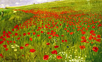 Пал Синьеи-Мерше: Meadow with Poppies