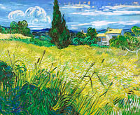 Vincent van Gogh: Green Field