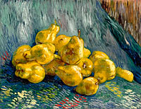 Vincent van Gogh: Still Life with Quinces