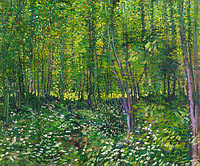 Винсент Ван Гог: Trees and undergrowth (4)