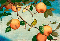 Persimmons and White-Eyes