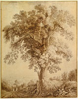 Якоб Филипп Хаккерт: A Large Tree at Albano