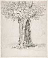 Study of a Tree; verso: Study of Houses