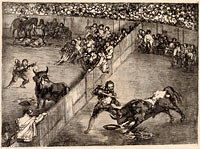 Bullfight in a Divided Ring (1)