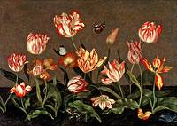 Johannes Bosschaert: Still Life with Tulips