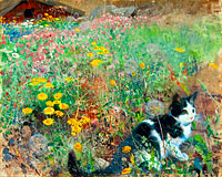 Бруно Лильефорс: Cat on a flowery meadow