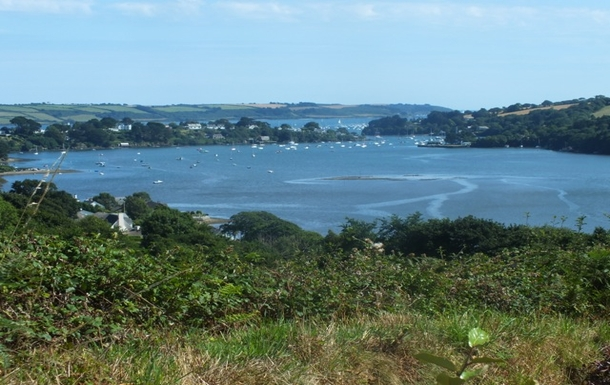 Restronguet Creek from the garden.