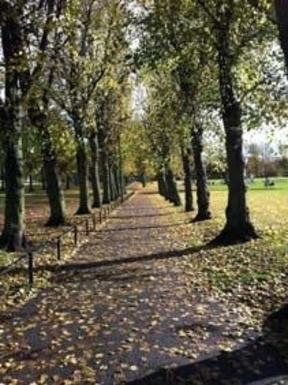 BoligBytte til,United Kingdom,Edinburgh, 2m, S,Our lovely local Harrison park