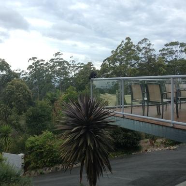 Home exchange in,Australia,Tamborine Mountain,Deck views - grey steel beam is now painted!!  :-)