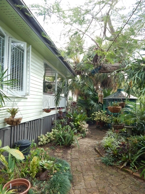 Home exchange in,Australia,Brisbane, 10k, N,Shaded Rear Garden
