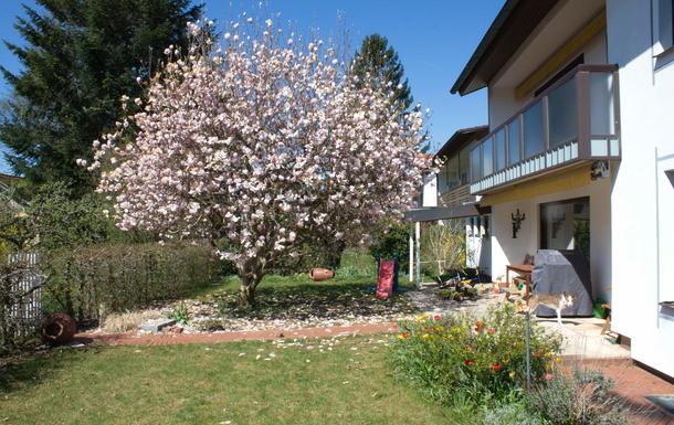 our garden :-)