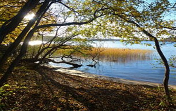 BoligBytte til,Sweden,Stockholm, 7k, S,Sätra Skogen - the natural reservoir
