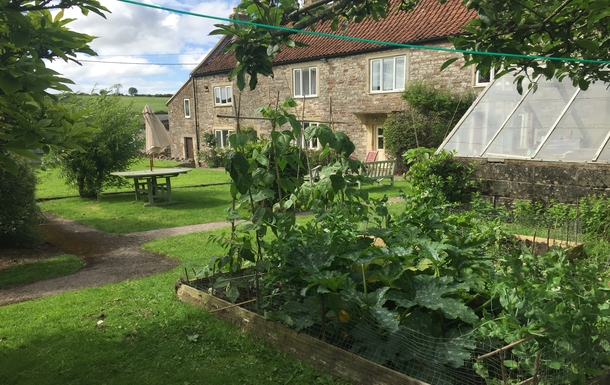 This is the front of our house with veggie patch