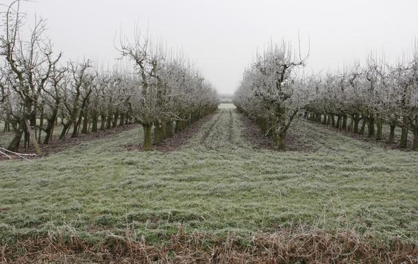 BoligBytte til,Netherlands,Amsterdam, 10k, S,Across the street in winter time