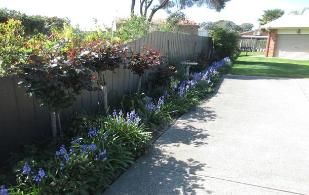 Home exchange in,Australia,BENALLA,Front Garden