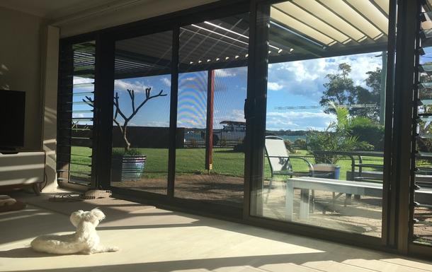 Home exchange in,Australia,BELLARA,Puppy keeping watch