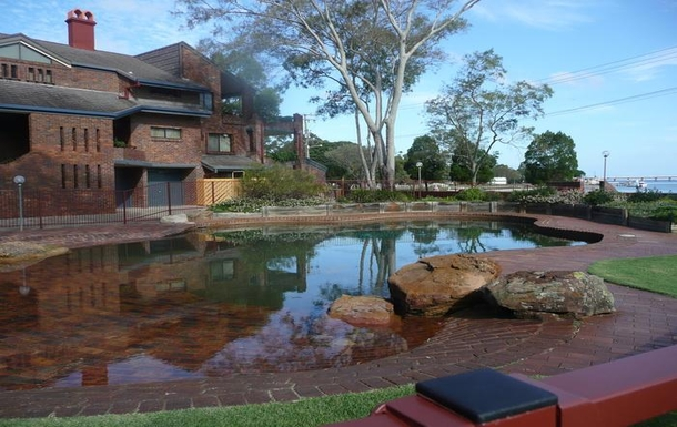 Home exchange in,Australia,BELLARA,Salt water swimming pool - no crocodiles!