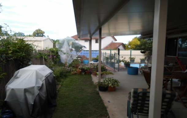 Home exchange in,Australia,HILLCREST,Back Patio,(Outside eating area) Side Garden & BBQ