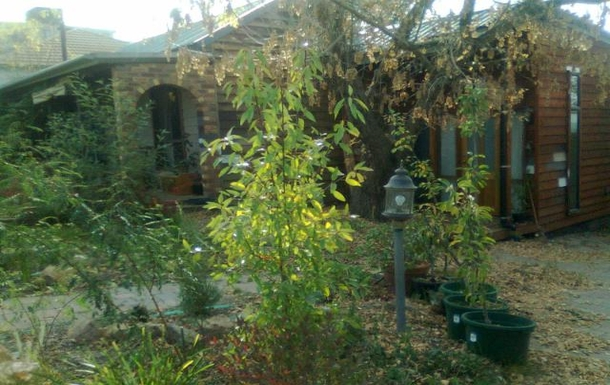 Home exchange in,Australia,CRESTWOOD,House photos, home images