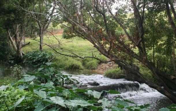 Home exchange in,Australia,POTTSVILLE,2 mins walk to Cudgera Creek behind our house.